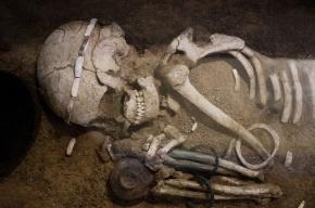В Ярославской области обнаружили скелеты 15 человек