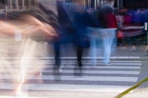 Женщина, сбившая бабушку и внучку на пешеходном переходе, осуждена на 2,5 года
