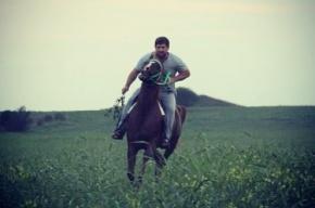Из-за обвинений «Синих ведерок» Кадыров пересел на лошадь