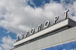 В «Пулково» задержали взяточницу-ветеринара