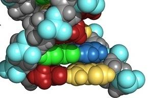 Ученые нашли гены, мутации в которых вызывают шизофрению