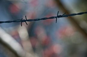 Милонов предложил открыть в Петербурге лагерь мигрантов с колючей проволокой