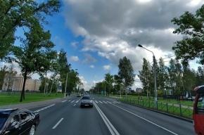 В Стрельне маршрутка сбила женщину на пешеходном переходе