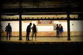 В Нью-Йорке котята остановили работу двух веток метро