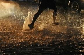 Дожди в Петербурге затопили проспект Испытателей
