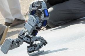 В Петербурге проходит «Гик Пикник» с танцующими роботами и квадрокоптерами