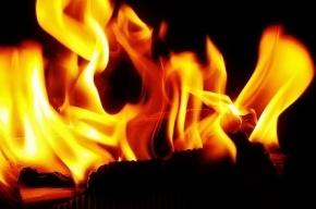 В Петербурге из-за пожара на Яхтенной улице ночью эвакуировали 50 человек