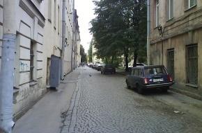 Улицу Репина в Петербурге могут сделать пешеходной