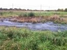 Фоторепортаж: «В парке города Пушкина появился фекальный пруд»