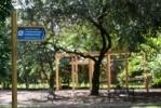 Ботанический сад после реконструкции: Фоторепортаж