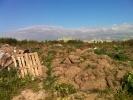 Фоторепортаж: «Под окнами Константиновского дворца экологи нашли свалку мусора»