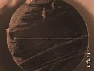 Торец световода под микроскопом, увеличение в 100 раз