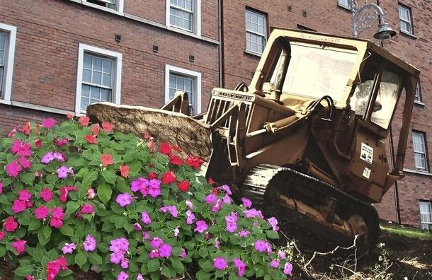 В Петербурге жителям пришлось выкопать цветник, потому что чиновникам он не понравился