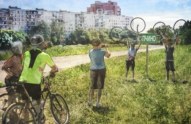 В Купчино для «чайников» и хилых придумали бесплатный спорт