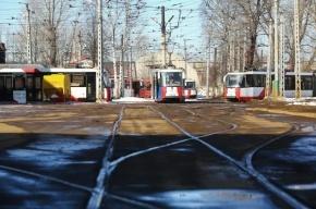 В Петербурге водитель Mitsubishi насмерть сбил пенсионерку на пешеходном переходе