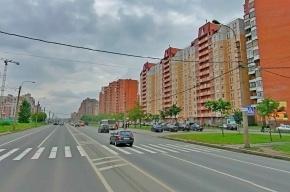 Названы три самых опасных пешеходных перехода Петербурга