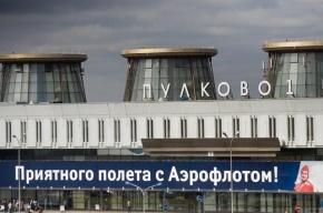 Федеральный министр устроил скандал, не получив багаж в «Пулково»