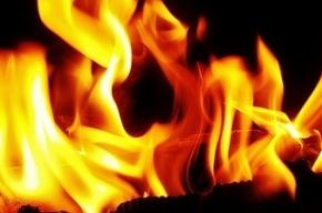 В вагоне электрички «Шаховская-Москва» вспыхнул пожар