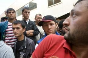 На Сенном рынке полиция задержала 238 нелегальных мигрантов