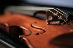 Полиция опровергла кражу скрипки Страдивари в Петербурге
