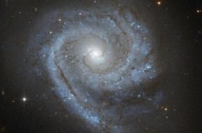 Астрономы обнаружили гигантский «арахисовый орешек» в центре Галактики