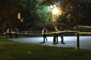 Во время стрельбы в парке Чикаго ранены 12 человек