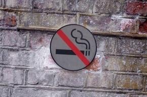 На время саммита G20 жителям Стрельны запретили курить