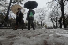 Первый снег в центре России прогнозируют на 25 сентября