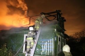 В Петербурге горел детский сад, один человек погиб