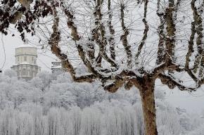 Будущая зима станет самой холодной за последние 100 лет
