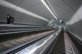 По факту убийства в метро «Приморская» возбуждено уголовное дело