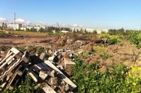 Под окнами Константиновского дворца экологи нашли свалку мусора