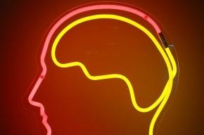 Ученые научились редактировать человеческую память во время сна