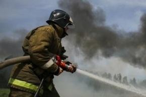 В Петербурге в попавшей в ДТП «Газели» заживо сгорели два человека