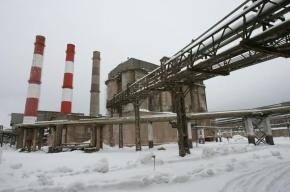 Десяток садовых участков в «новой Москве» залило клеем