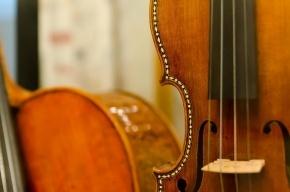 В Петербурге из квартиры похитили cкрипку Страдивари