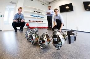 Исследовать Марс в будущем поможет робот-змея