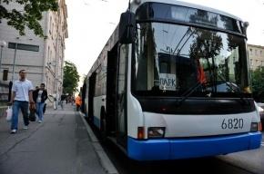 Смольный спрашивает у петербуржцев о цвете общественного транспорта