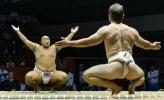 Всемирные Игры: Сумо и дзюдо 18-19 октября 2013 года: Фоторепортаж