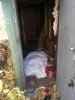 Сварщик спрятал тело убитой подруги возле станции Шушары: Фоторепортаж