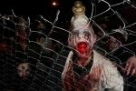 Фоторепортаж: «Хэллоуин-2013 »