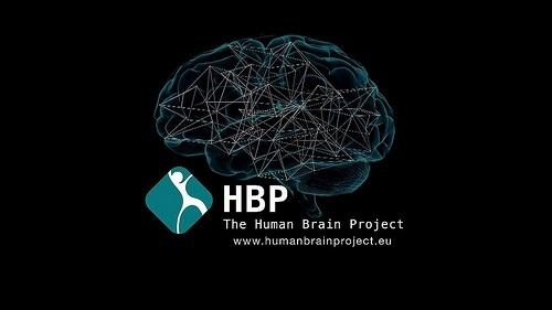 Проект Human Brain : Фото