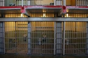 Счетная палата считает, что новый СИЗО в Петербурге слишком хорош для заключенных