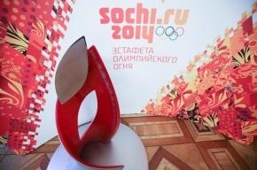 Ленинградская область приняла эстафету Олимпийского огня