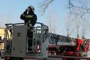 На Невском проспекте горит квартира