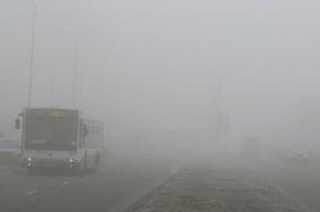 В Москве в ДТП с участием автобуса погибли три человека