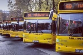 Петербургский автопарк пополнился белорусскими автобусами