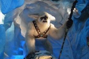 Ученые: Снежный человек оказался редким видом медведя