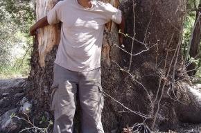 Чернокожего француза привязали к дереву и бросили в подмосковном лесу