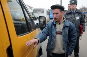 После мигрантов-дворников из Кронштадта выгонят мигрантов-водителей